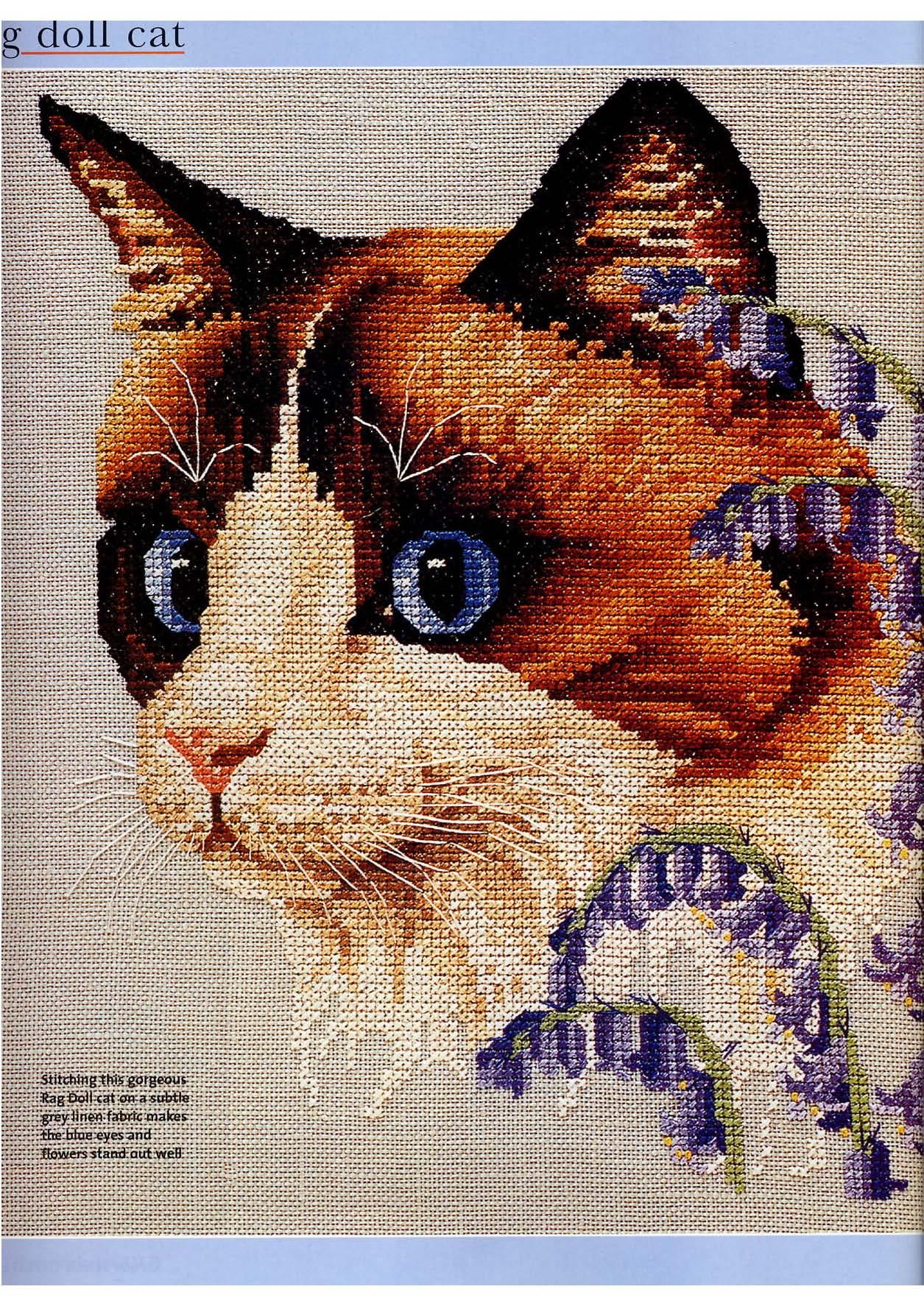 Un gatto realistico schema punto croce gratis 1 for Schemi punto croce animali
