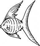 Disegni da colorare categoria pesci for Pesciolino da colorare