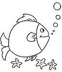 Risorse enigmistiche categoria pesci for Trota da colorare