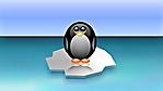 il pinguino tux su un iceberg wallpaper full hd