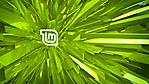 linux mint sfondo 1920x1080 vettori verdi