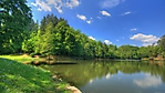 lago nel bosco wallpaper full hd