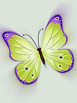 Farfalla verde e viola sfondo wallpaper 240x320
