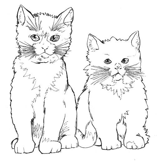 Due Gatti Con Folti Baffi Disegno Da Colorare Disegni Da Colorare