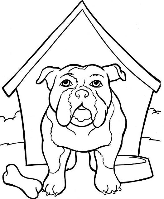Cane Bulldog Con Osso Nella Cuccia Da Colorare Disegni Da