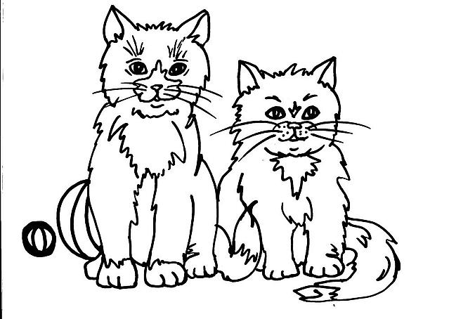 Due mici maschi seduti disegni da colorare disegni da for Immagini gatti da colorare