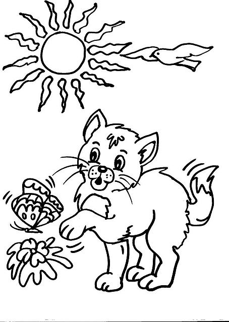 Gattino che gioca con farfalla disegno da colorare disegni for Immagini gatti da colorare