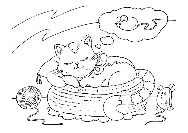 Micia Dorme Nella Cesta E Sogna Un Topolino Disegni Da