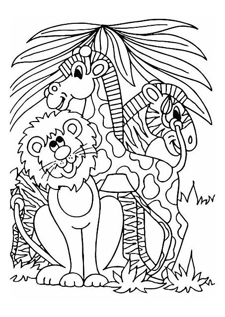 Leone Giraffa E Zebra Da Colorare Per Bambini Disegni Da