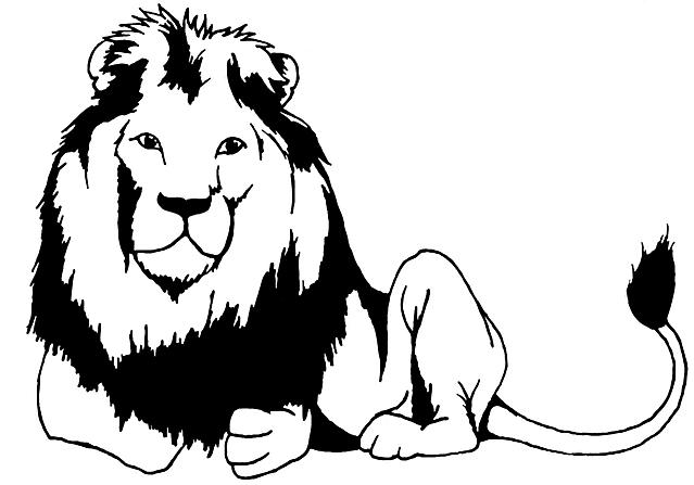 Leone realistico da colorare 5 disegni da colorare - Schemi animali stampabili ...
