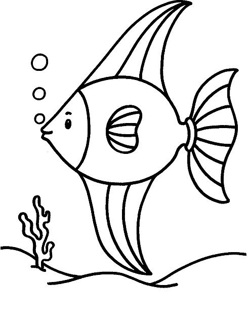 Pesce Angelo Sul Fondale Da Colorare Disegni Da Colorare Categoria