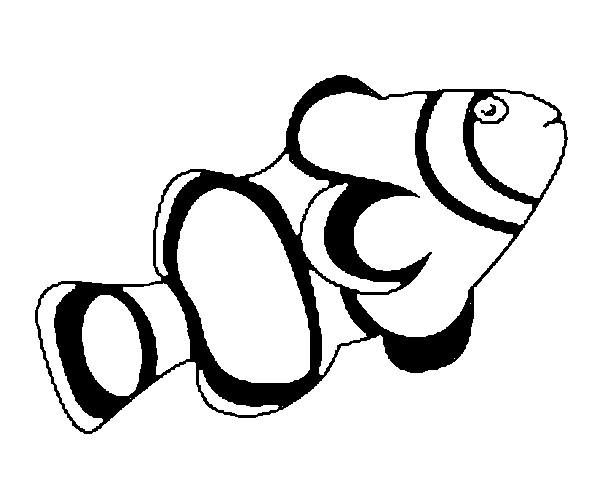 Pesce d 39 acquario per bambini da colorare disegni da for Pesci da stampare e colorare