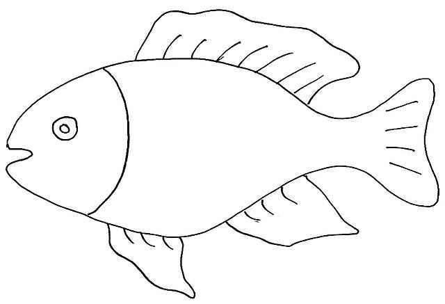Pesce disegno da colorare gratis disegni da colorare for Immagini da colorare pesci