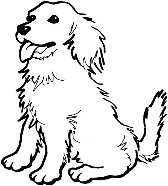 213 besides 1012 also Free Coloring Media 2271 in addition Dog Coloring Pages additionally 001 Christmas Stocking. on spaniel coloring pages for adults