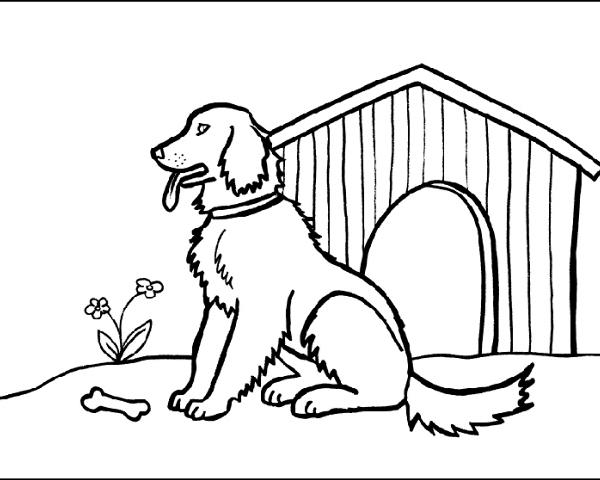 Cane Nella Cuccia Da Colorare Online Gratis Disegni Da Colorare