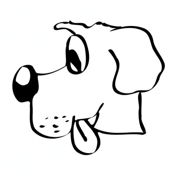 Viso di cane da colorare per bambini disegni da colorare for Immagini di cani da colorare