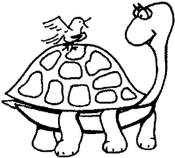 Disegno di tartaruga con uccellino sul guscio disegni da for Uccellino disegno